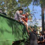Artistas brindan de forma independiente su apoyo a La Habana